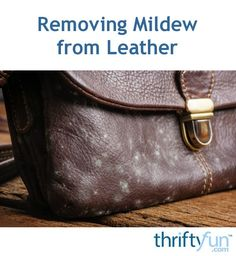 Exceptional cleaning tips tips are offered on our site. Read more and you wont be sorry you did. Cleaning Mold, Deep Cleaning Tips, House Cleaning Tips, Cleaning Hacks, Leather Shoes, Leather Purses, Leather Handbags, Homemade Toilet Cleaner, Mildew Remover