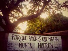 Porque amores que matan nunca mueren.  // Acción poética