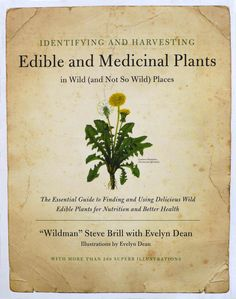 Identifying and Harvesting edible and Medicinal Plants | Book