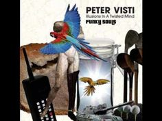 Peter Visti - My advice