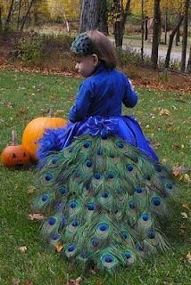 peacock halloween costume. I wonder if I could make this for myself.