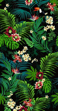 Wallpaper green iphone design flower 31 ideas for 2019 Tropical Wallpaper, Flower Wallpaper, Screen Wallpaper, Pattern Wallpaper, Wallpaper Backgrounds, Iphone Wallpaper Art, Parrot Wallpaper, Vintage Backgrounds, Retro Wallpaper