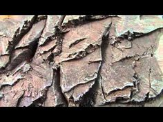 ▶ TerranScapes - New Rock Face for Cliffs - GW Escape from Goblin Town - YouTube carving slate rocks out of pink foam and paint  good effects!