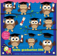 Happy owls clipart for your graduation decorations, cards, diplomas, stickers, etc. This set includes 14 JPG and 14 transparent PNG images.