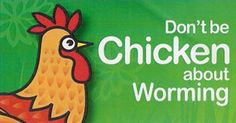 Don't Be a Chicken Sign