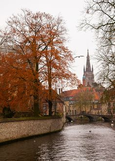 All things Europe — Bruges (by matt. Autumn Cozy, Fall Winter, Destinations, Autumn Scenes, Europe, Chilly Weather, Bruges, Wonderful Places, Landscape
