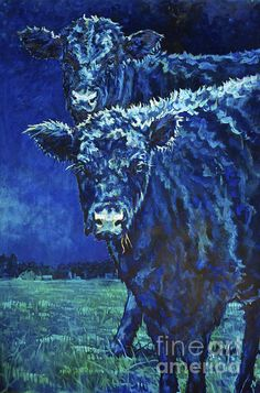 Patricia A Griffin,oil, painting,prints,cow,bovine,nocturnal,night,angus,black angus,farmland,landscape,animal,two,twins