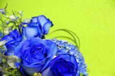 Las Vegas Flowers, Premier Event Florists: September 2014