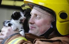 A Firefighter and a kitten....so cute.