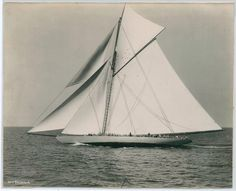 lazyjacks: The Shamrock IN. Stebbins, photographerNew York Public Library, image ID 100478 Old Boats, Sail Boats, Sailboat Racing, Classic Yachts, Sail Away, Sailing Ships, Nautical, Architecture, America's Cup