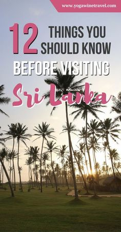12 Things You Should Know Before Visiting Sri Lanka 12 Things You Should Know Before Visiting Sri LankaTraveling to Sri Lanka for the first time? Read on for essential Sri Lanka travel tips an Travel Advice, Travel Guides, Travel Tips, Travel Destinations, Travelling Tips, Travel Articles, Bhutan, Asia Travel, Wanderlust Travel