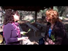 The story of the bibical Fig Leaf at Neot Kedumim in Modiin Israel