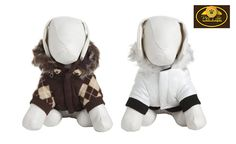"Dog owners and pups will love this deal: ""One Winter Performance Jacket"" as featured on doggyloot.com"
