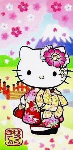Hello Kitty Photos, Sanrio Hello Kitty, Manga, Japan, Hobby Lobby, Cats, Kimono, June, Beer