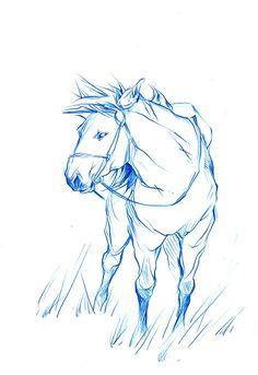 Animal Blog: Horsie