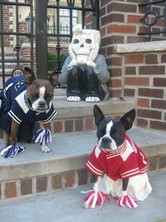 I went with my buddy Quinn we were Cheerleaders!