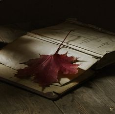 """""""Autumn Still Life, photography by Olga Vlasova"""" love vintage books, nice lighting, and the leaves add interest."""