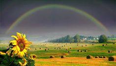 Palavras ao Vento: As fabulosas fotos de Igor Zenin