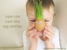 grass seed egg plantings