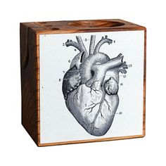 If home is where the heart is, the Cardiac Kid Desk Caddy belongs in your home. You'll adore its unusual aesthetic, crafted from reclaimed wood and illustrated with a print taken from vintage medical t...  Find the Cardiac Kid Desk Caddy, as seen in the The Apothecary Collection at http://dotandbo.com/collections/holiday-boutiques-the-apothecary?utm_source=pinterest&utm_medium=organic&db_sku=109855
