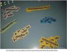 Para repasar las ideas fundamentales del tema que estamos trabajando, en 4º EP, hemos incorporado una técnica de aprendizaje cooperativo, el juego de las palabras, basado en las estructuras de Spen…