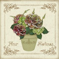 New print available on plout-gallery.artistwebsites.com! - 'Fleur Hortensia-jp3022' by Jean Plout - http://plout-gallery.artistwebsites.com/featured/fleur-hortensia-jp3022-jean-plout.html
