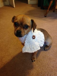 Knitted Dog Scarf with Button or Cat Scarf MADE TO by TykesAndTots