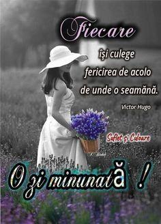 Victor Hugo, Victoria, Motivation, Movies, Movie Posters, Folklore, Films, Film Poster, Cinema