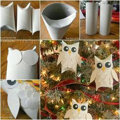A few hoots for our tree!