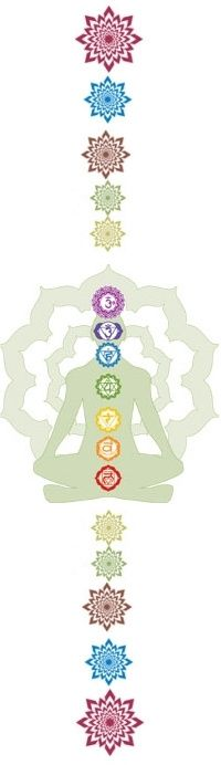 Transpersonal Chakras and the Hara Line - Humanity Healing Network Psychic Development, Spiritual Development, The Hara, Yoga, Energy Fitness, Kinds Of Energy, Cosmic Consciousness, Chakra System, Tantra