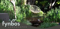 Creative design and meticulous installation has earned Fynbos Landscaping a leading reputation in the field of landscaping around Johannesburg. Top Gardening Design Company in Johannesburg. Landscape Design, Garden Design, Water Features, Creative Design, Fields, Landscaping, Plants, Water Sources, Landscape Designs
