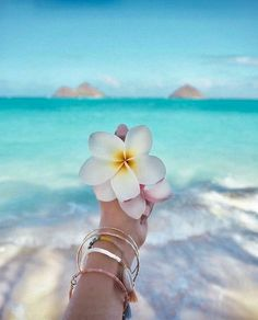 Travel Discover The Worlds 10 Most Underrated Tropical Destinations Hintergrundbilder Cute Wallpapers Wallpaper Backgrounds Iphone Wallpaper Trendy Wallpaper Cute Summer Wallpapers Beach Aesthetic Summer Aesthetic Beach Pictures Pretty Pictures Strand Wallpaper, Beach Wallpaper, Cute Wallpapers, Wallpaper Backgrounds, Iphone Wallpaper, Cute Summer Wallpapers, Summer Photography, Nature Photography, Photography Flowers