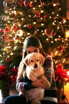 A Golden Retriever named Georgia. pictures Golden Retriever - Why Are They The Perfect Pets - Doggie Woof Christmas Photography, Winter Photography, Dog Photography, Dog Christmas Pictures, Christmas Post, Christmas Puppy, Xmas, Christmas Card Photo Ideas With Dog, Christmas Cookies