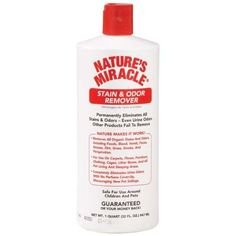 Natures Miracle Stain and Odor Remover: http://www.amazon.com/Natures-Miracle-Stain-Odor-Remover/dp/B0002ASLMW/?tag=httpbetteraff-20