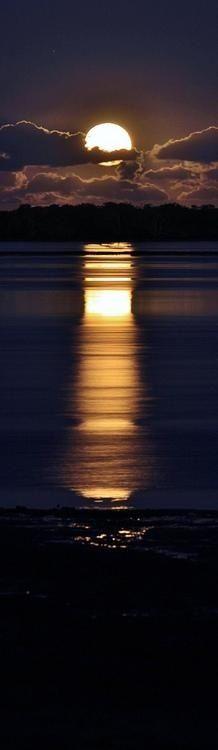 Moonbeam Ocean