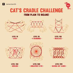 Cat's Cradle Infographic on Behance