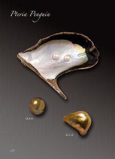 Shanghai Gems S.A. - Natural Pearls Species