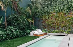 A Lush Retreat With a Sheltered Rooftop Pool in Mexico City - Dwell