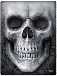 Big Face Skull – Skulls And Gear