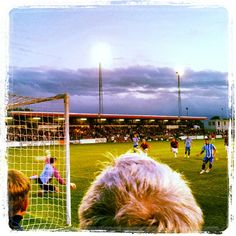 Twitter @4psta: Hoskins from the spot vs Lewes