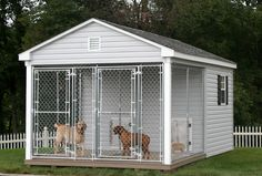 for those days when The Doogs insist on being outside 24/7.....10x16 Dog kennel and run for large breed dogs
