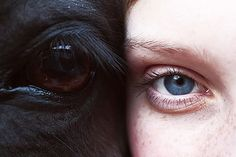 the eyes of a horse and a girl. dark and light.