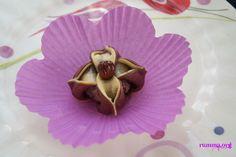 жасмин цветы десерт
