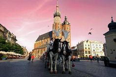There are hotels in Krakow at all price points, which almost makes up for the small amount of hotel deals Krakow available. For More Information Visit https://www.touristtube.com/hotels-in-Krakow-C_396388