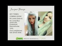 2014 Fall Hair Color Trends Formula Reveal Webinar!