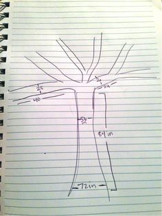 Sketch of a Tree with Measurements for Yarn Bomb