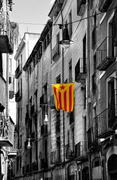 As Scottish voters approach Referendum Day on 18 September, plenty of Catalan campaigners for independence are placing their hopes on a resounding Yes. Image Cat, Barcelona Spain, Scotland, Places, Photography, Travel, Snowman, Calm, Country