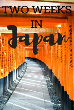 Two Weeks in Japan - and why you should travel to Japan!