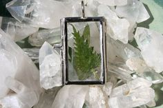 Mica Nettle & Mugwort Silver Glass Hinged by MoontreeApothecaries