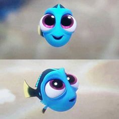 Because everyone needs baby Dory on their page.